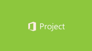 Project Pro 专业版 OLP