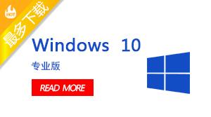 Microsoft windows 10 专业版