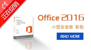 Office 2016 小型企业版