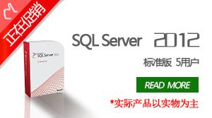 SQL Server 2012标准版5用户