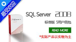 SQL Server 2008标准版5用户