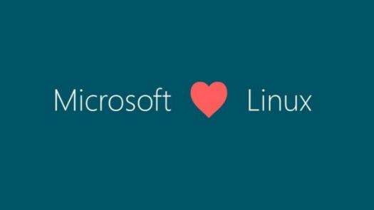 微软联手Linux 双赢合作公共云服务_正版软件商城聚元亨