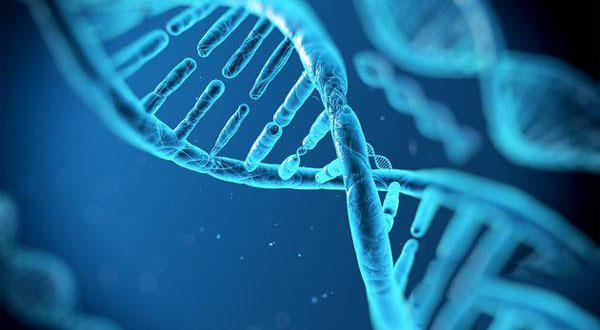 微软DNA存储技术获得大突破:已保存约200MB的数据_正版软件商城聚元亨